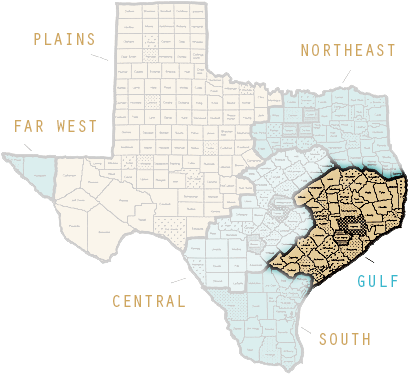 Gulf Region Map